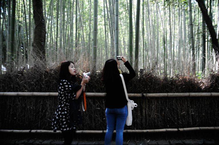 bamboo photo people pray prayer doa kanji rickshaw arashiyama kyoto beca bamboo path groove bambu shrine temple roda merah red old town travel eva aribowo spring japan jepang